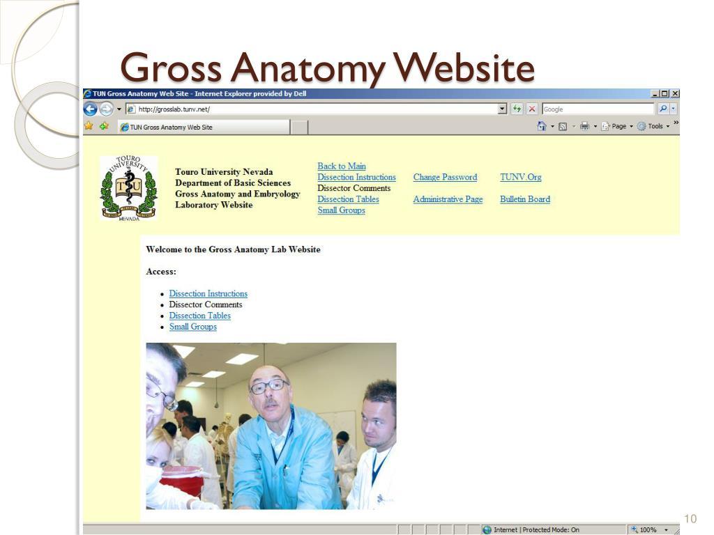 Gross Anatomy Website
