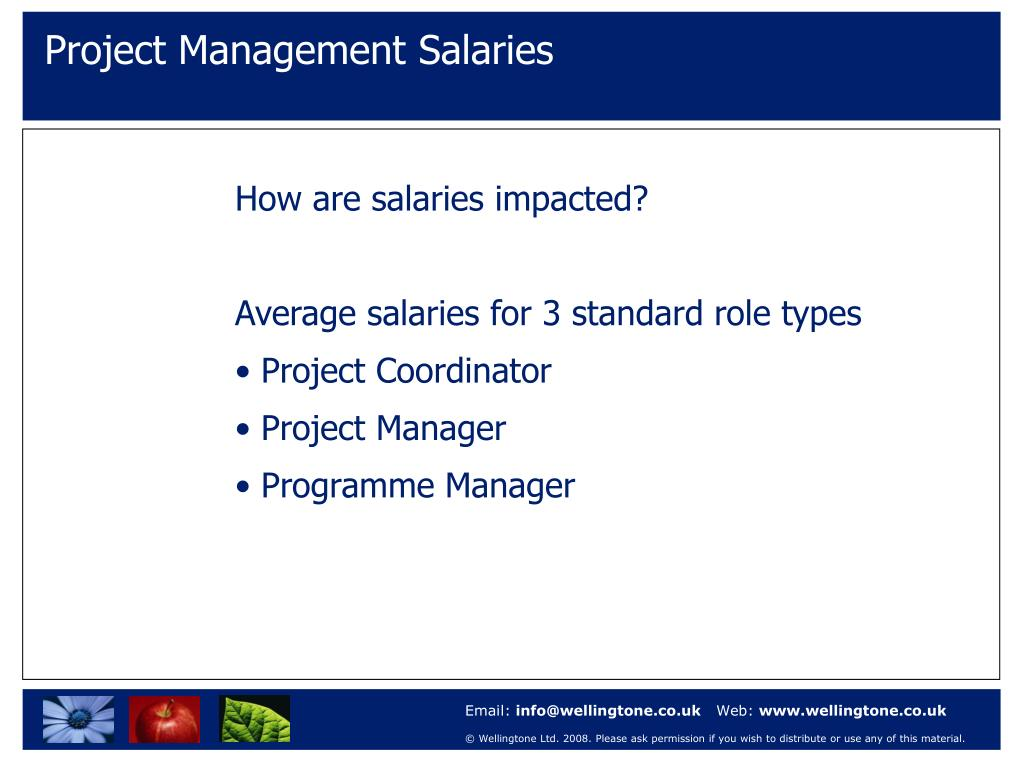 Project Management Salaries