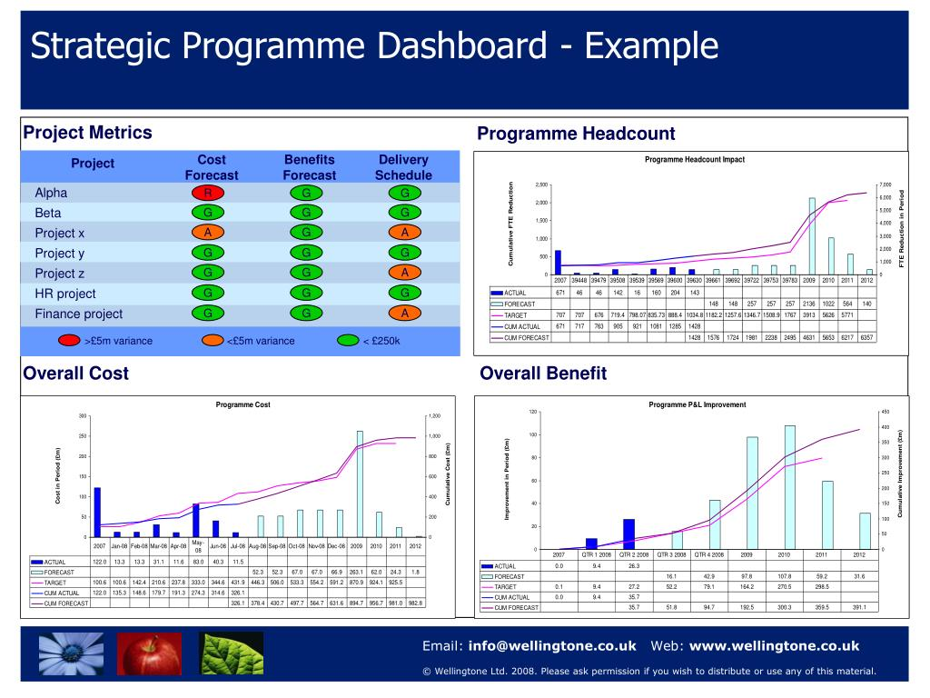 Strategic Programme Dashboard - Example