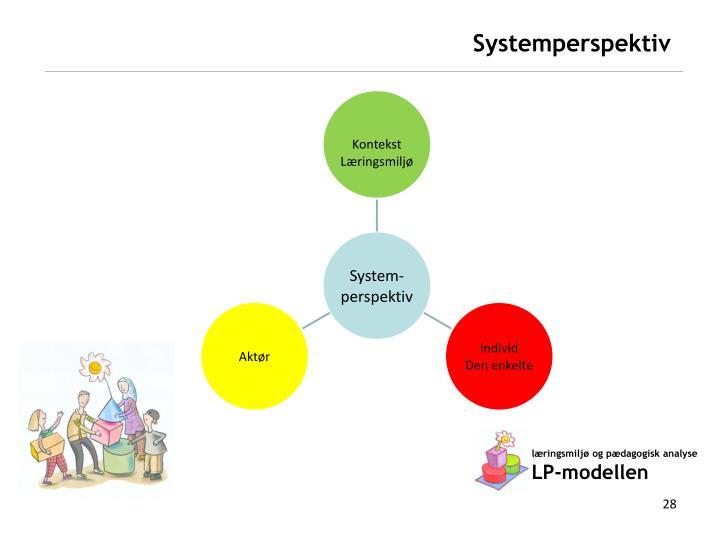 Systemperspektiv