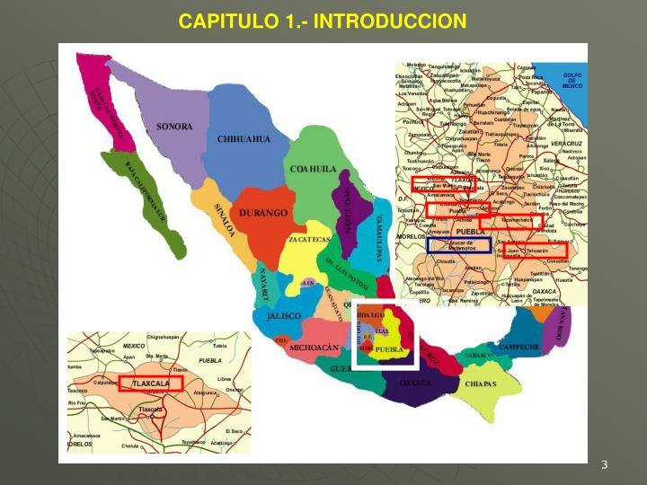 CAPITULO 1.- INTRODUCCION