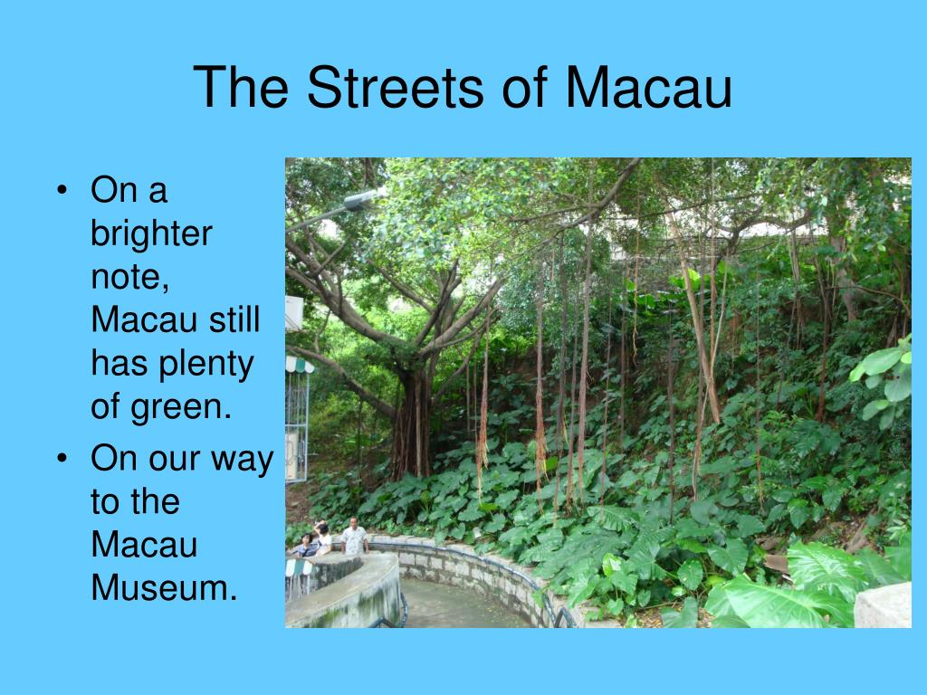 On a brighter note, Macau still has plenty of green.