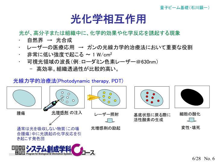 光化学相互作用