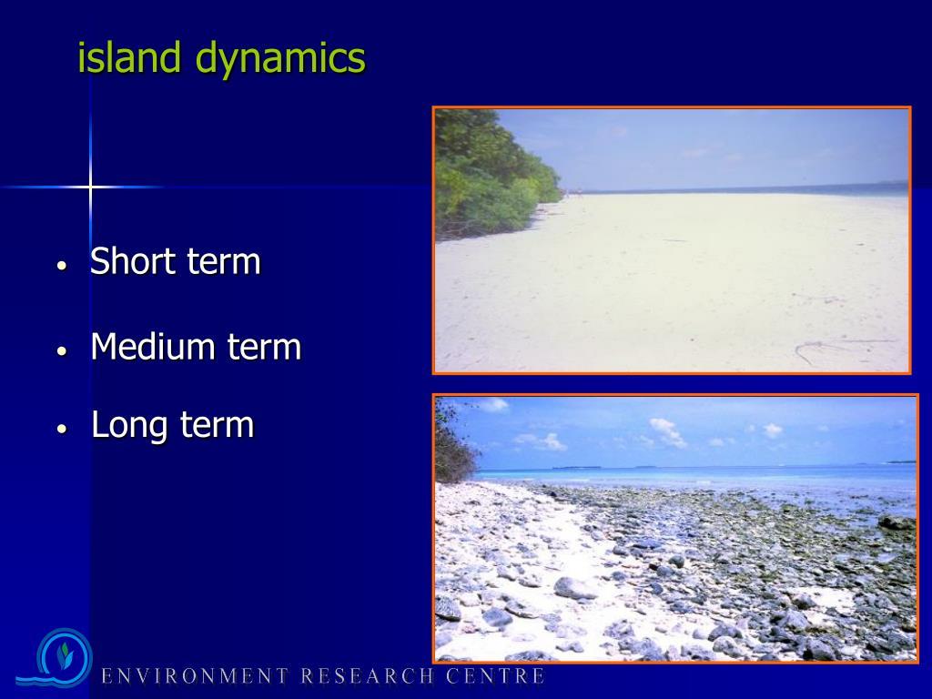 island dynamics