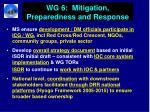 wg 6 mitigation preparedness and response