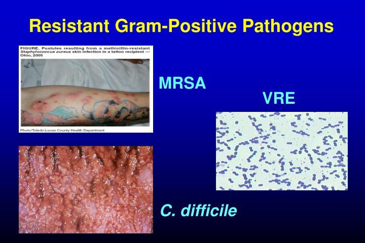 Resistant Gram-Positive Pathogens