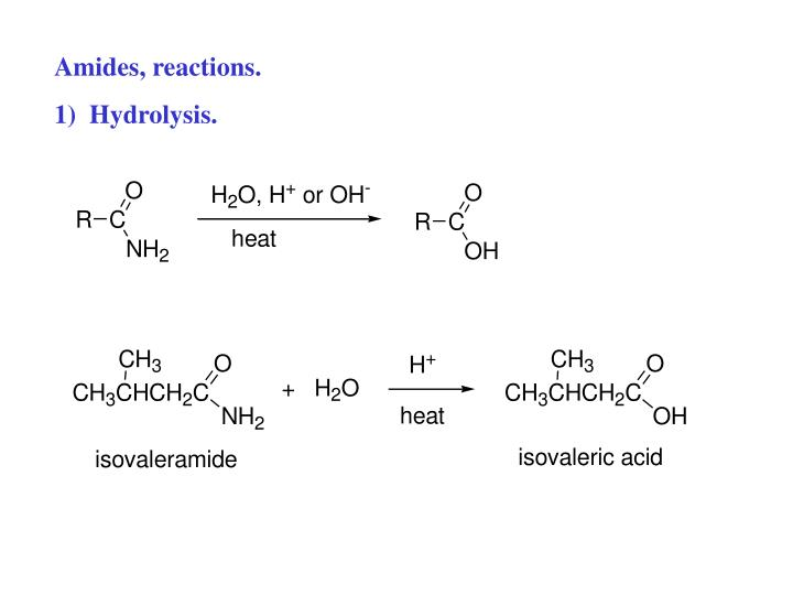Amides, reactions.