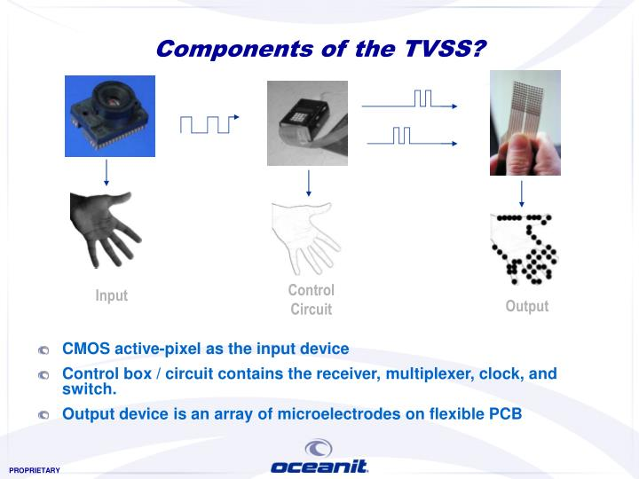 Components of the TVSS?