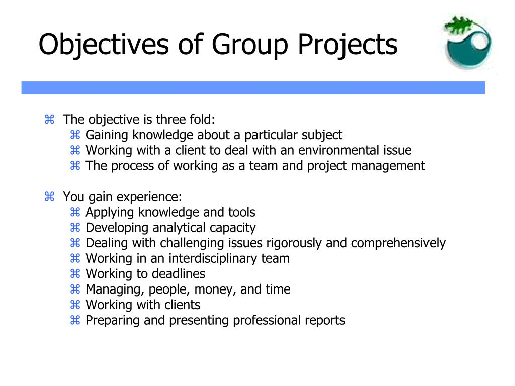 Objectives of Group Projects