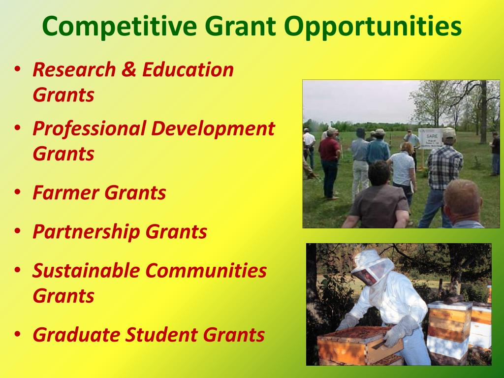 Competitive Grant Opportunities