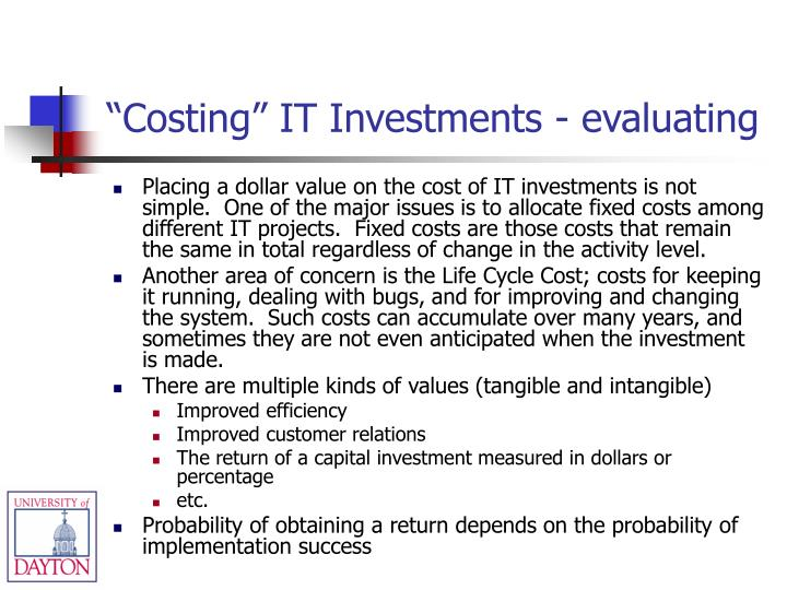 """Costing"" IT Investments - evaluating"