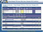 project budget fte hours risk issue changes pij conditions