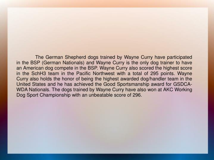 The German Shepherd dogs trained by Wayne Curry have participated in the BSP (German N...