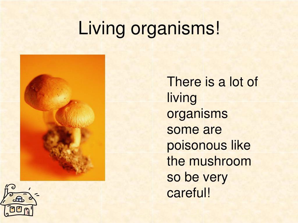 Living organisms!