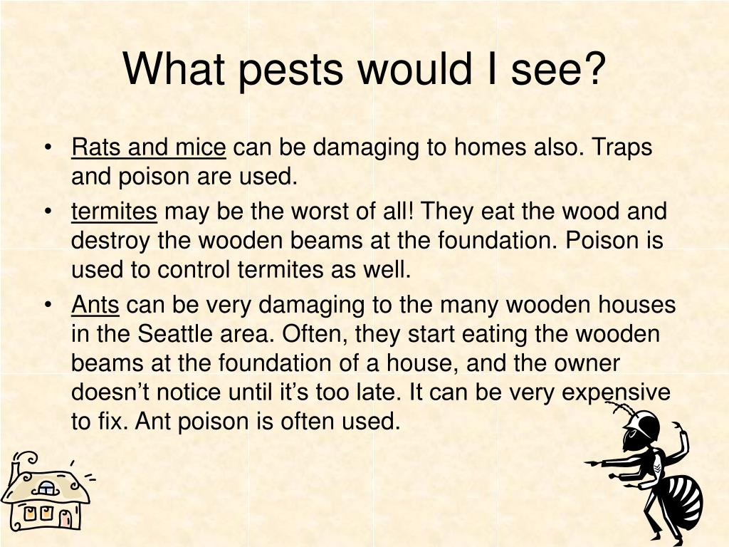 What pests would I see?