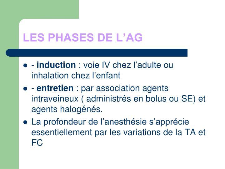 LES PHASES DE L'AG