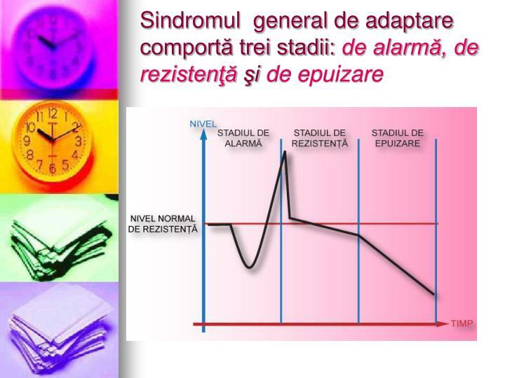 Sindromul  general de adaptare comportă trei stadii: