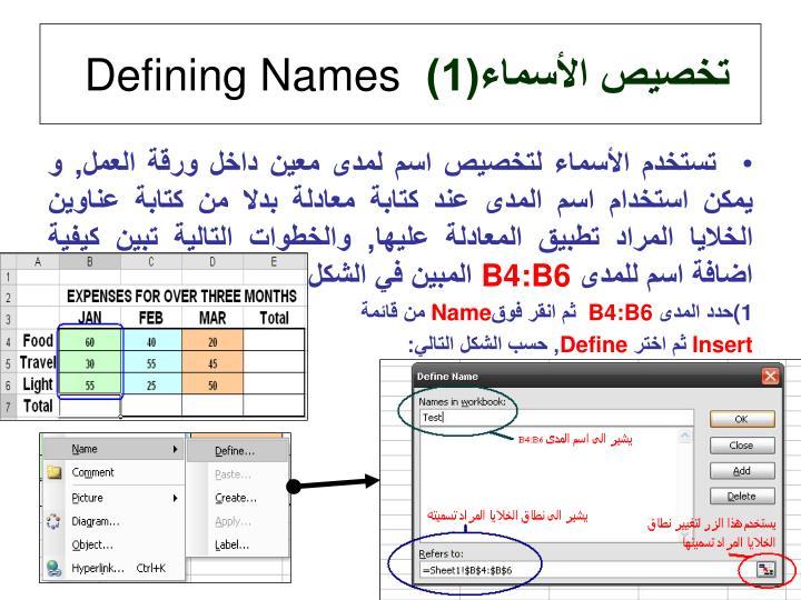 تخصيص الأسماء(1)