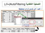 autofiltering5