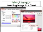 inserting image in a chart1