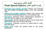 paste special paste special options
