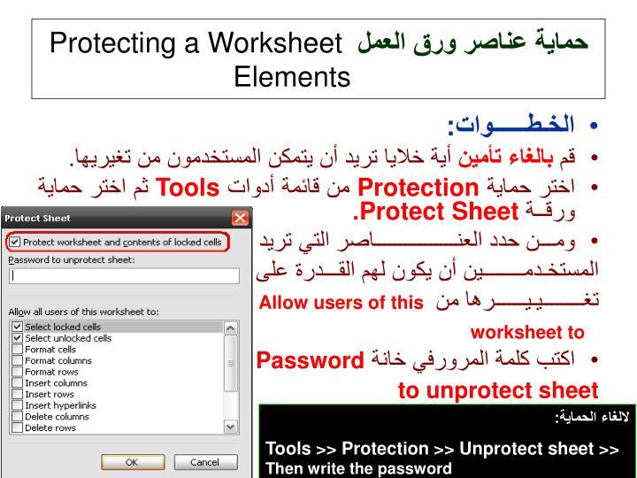 حماية عناصر ورق العمل