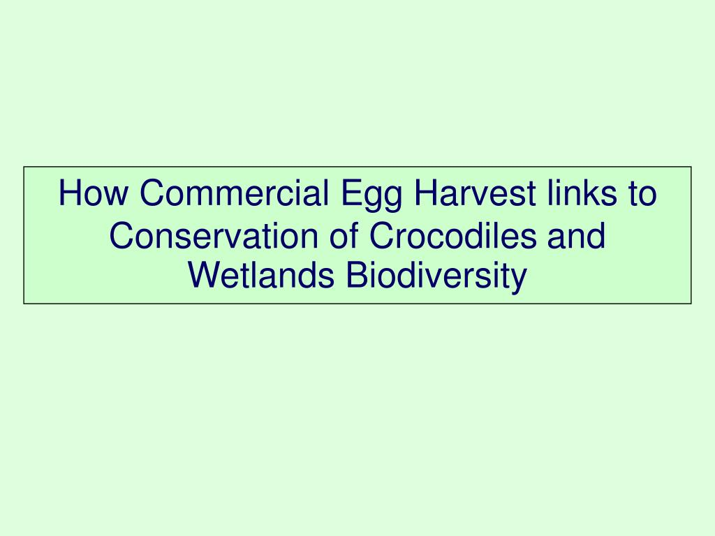 How Commercial Egg Harvest links to