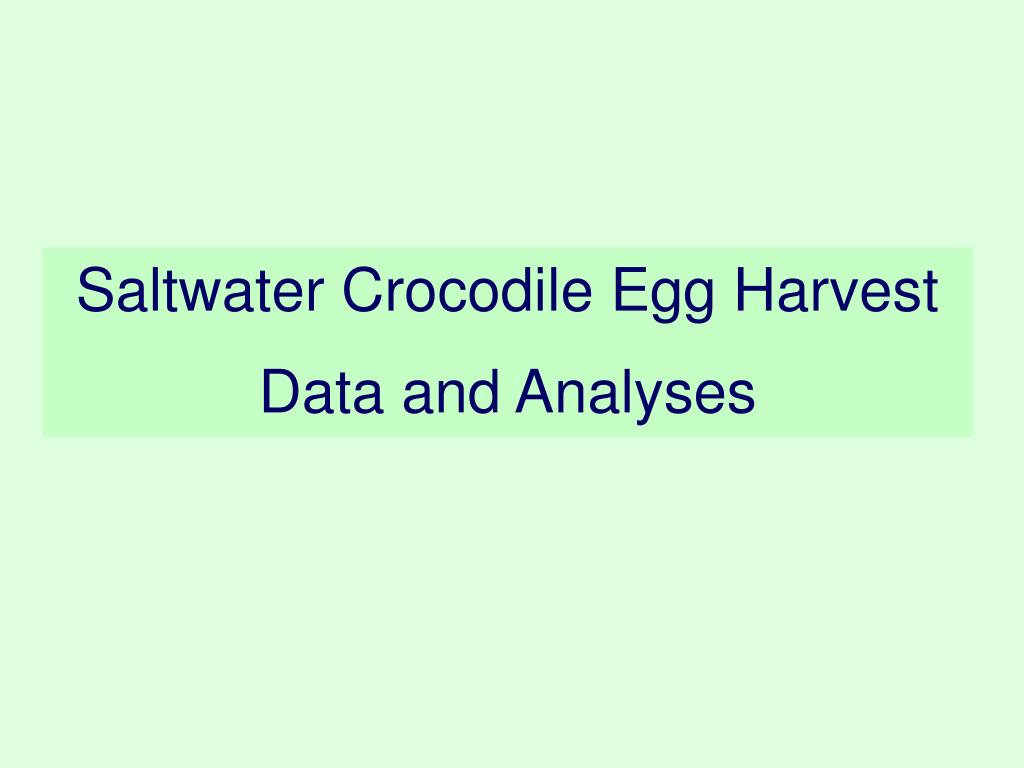 Saltwater Crocodile Egg Harvest