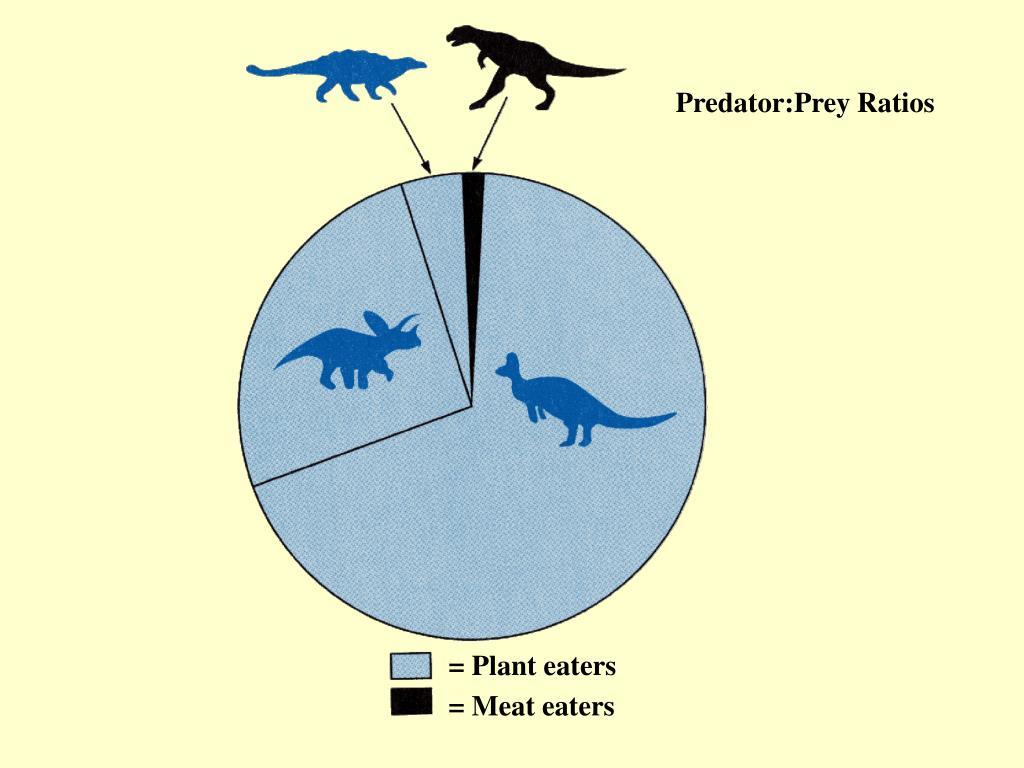 Predator:Prey Ratios