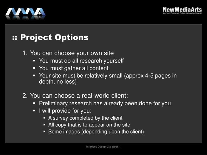 :: Project Options