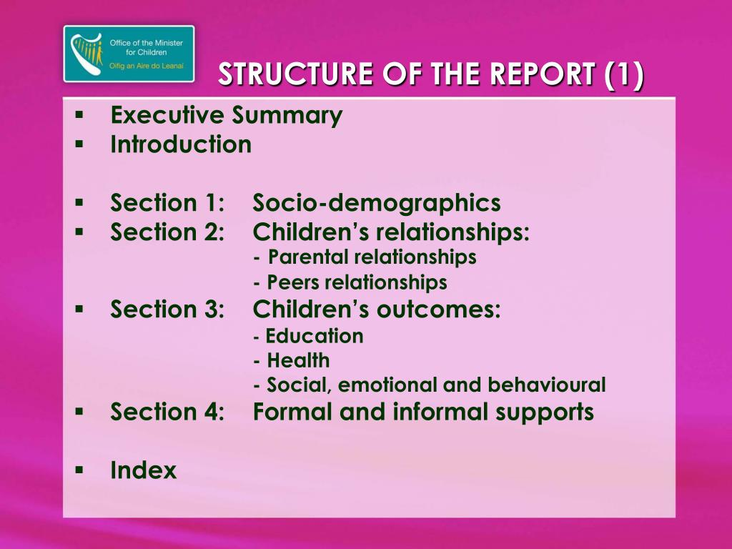 STRUCTURE OF THE REPORT (1)