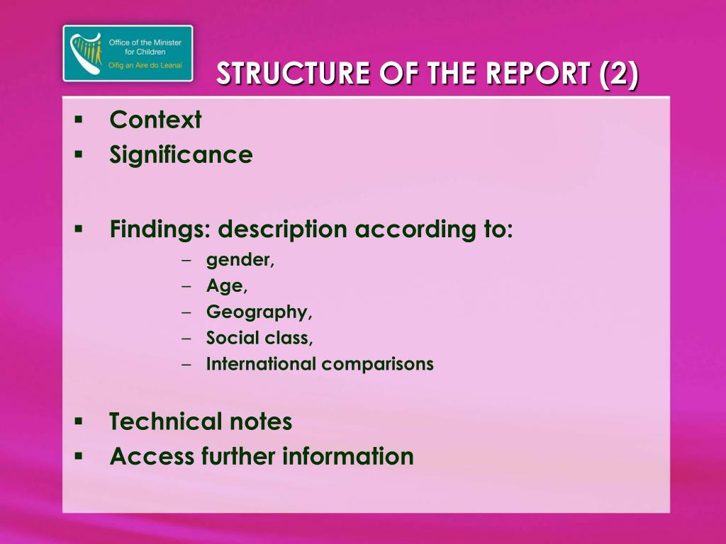 STRUCTURE OF THE REPORT (2)
