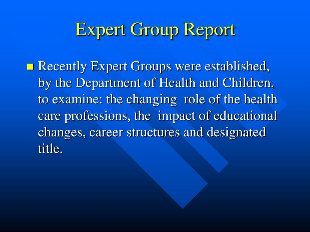 Expert Group Report