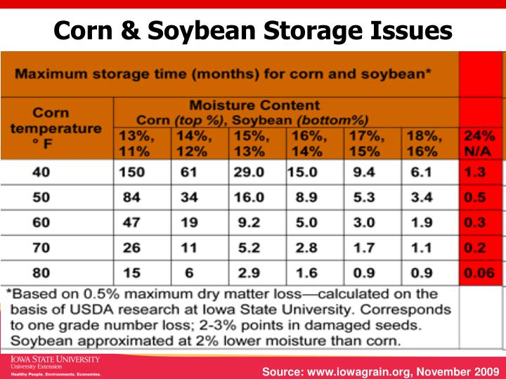 Corn & Soybean Storage Issues