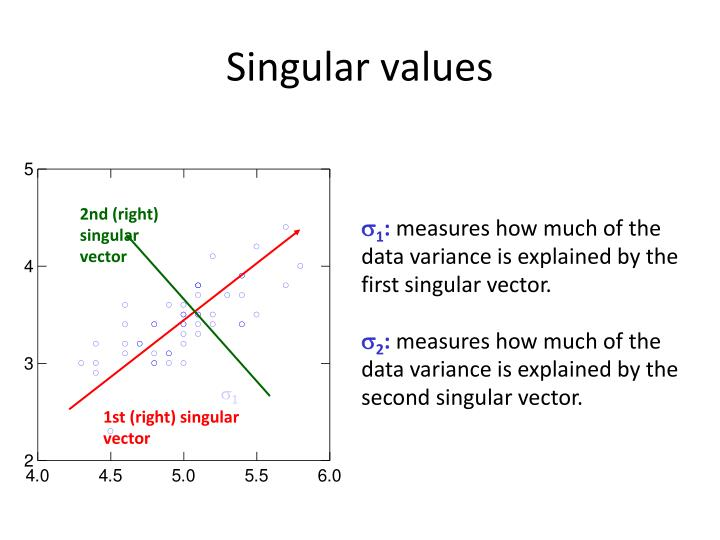 2nd (right) singular vector
