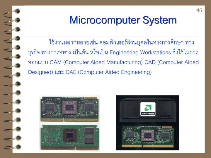 Microcomputer System