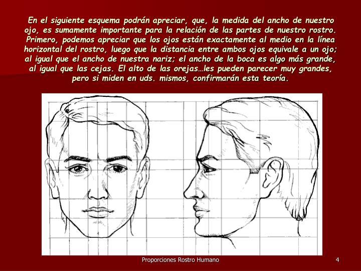 En el siguiente esquema podrán apreciar, que, la medida del ancho de nuestro ojo, es sumamente importante para la relación de las partes de nuestro rostro.