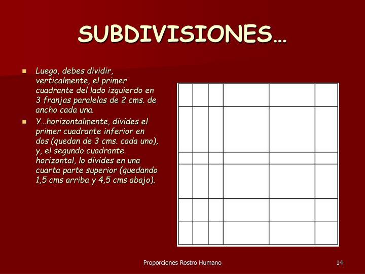 SUBDIVISIONES…