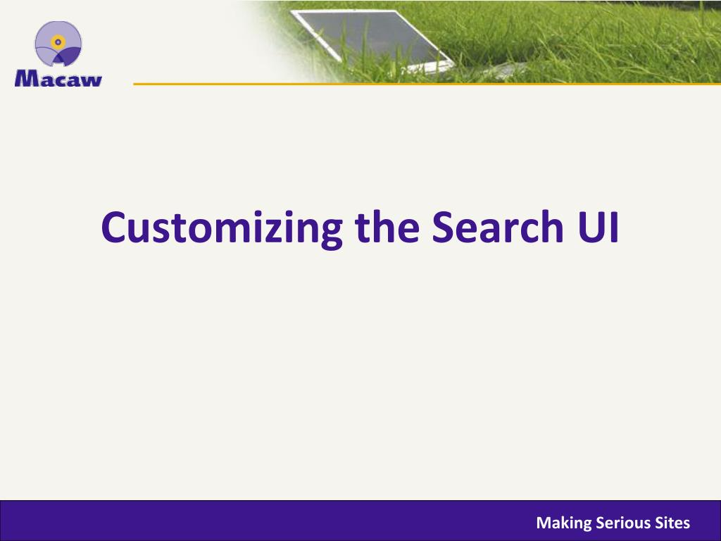 Customizing the Search UI