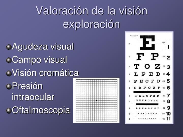 Valoración de la visión