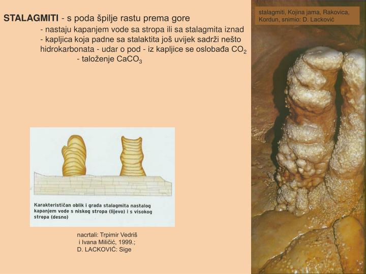 stalagmiti, Kojina jama, Rakovica, Kordun, snimio: D. Lacković