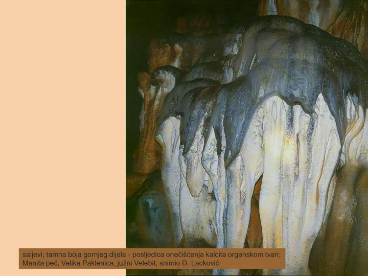 saljevi; tamna boja gornjeg dijela - posljedica onečišćenja kalcita organskom tvari; Manita peć, Velika Paklenica, južni Velebit, snimio D. Lacković