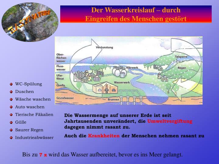 Der Wasserkreislauf – durch