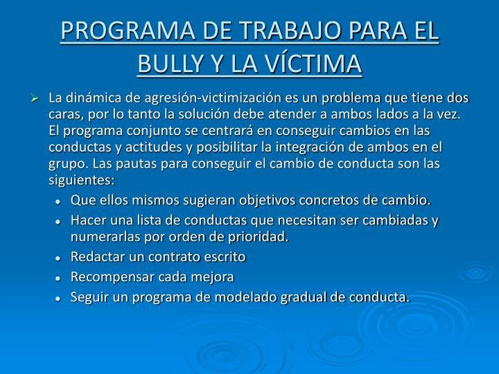 PROGRAMA DE TRABAJO PARA EL BULLY Y LA VÍCTIMA