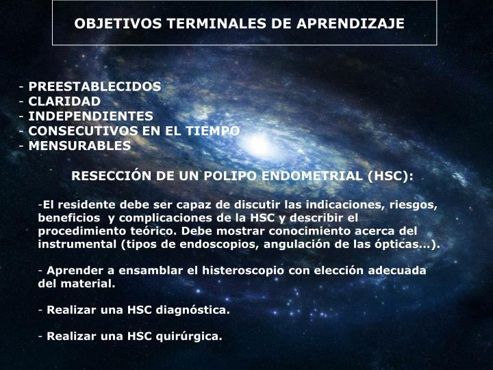 OBJETIVOS TERMINALES DE APRENDIZAJE