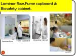 laminar flow fume cupboard biosafety cabinet