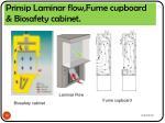 prinsip laminar flow fume cupboard biosafety cabinet