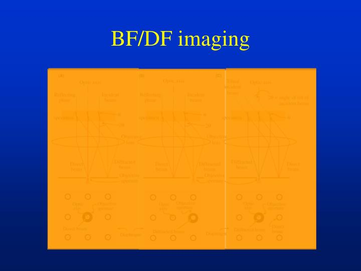 BF/DF imaging