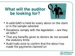 what will the auditor be looking for