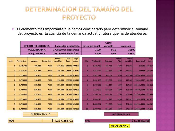 DETERMINACION DEL TAMAÑO DEL PROYECTO